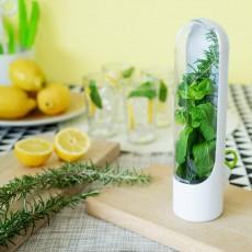 Контейнер для хранения зелени Fresh