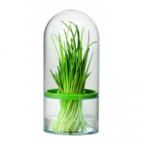 Емкость для хранения трав SENSE