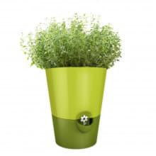 Горшок с автополивом для зелени FRESH HERBS