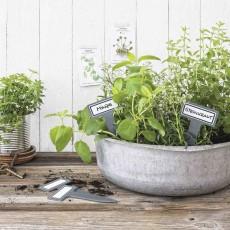 Таблички для растений с этикетками