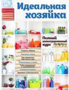 13218680-nataliya-nikolaevna-baranova-idealnaya-hozyayka-polnyy-illustrirovannyy-kurs-13218680