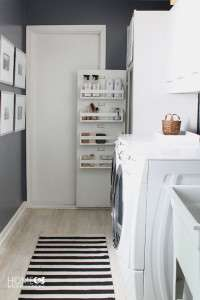 Laundry-cleaning-closet (1)