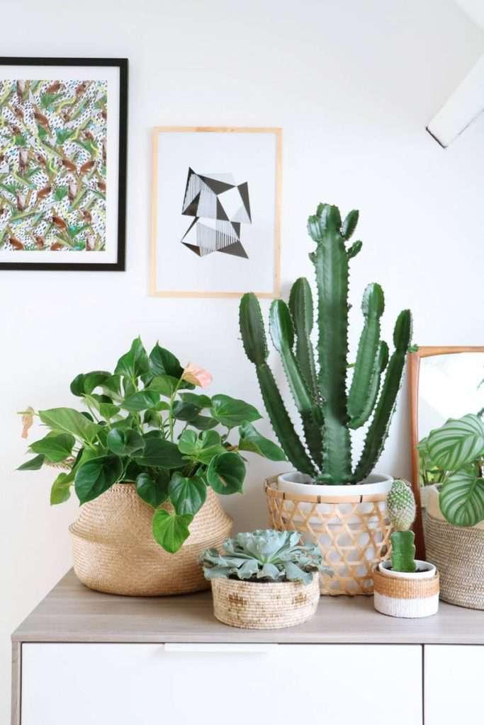 bohemian-decorative-baskets-italianbark-interiordesignblog-1-683x1024